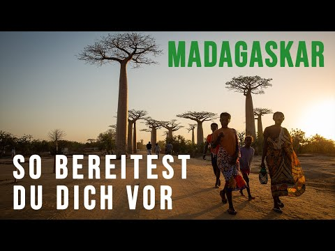 your-madagascar-travel-guide-for-2019-🇲🇬all-you-need-to-know!
