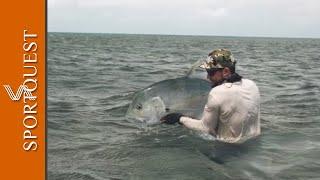 Saltwater Fly Fishing Cosmoledo Seychelles