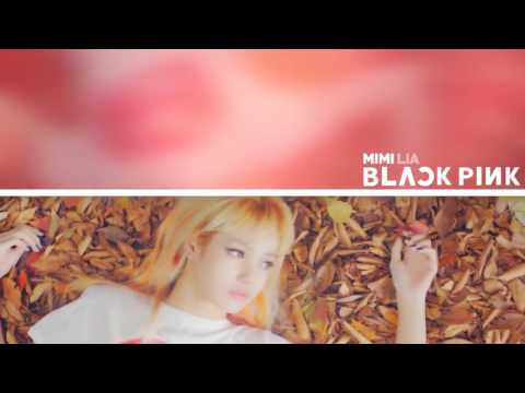 [DUET] BLACKPINK - 불장난 (PLAYING WITH FIRE)