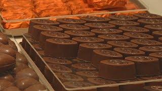 Производитель изысканного шоколада из Сирии начал всё с начала в Венгрии (новости)