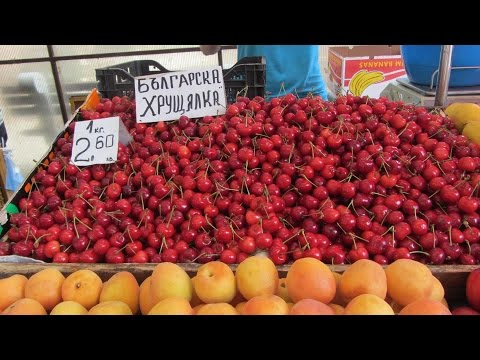 Варна — Википедия