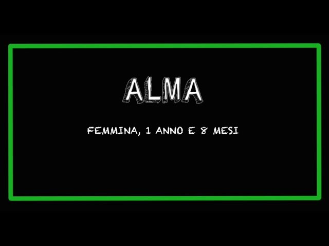 ALMA E VERONICA
