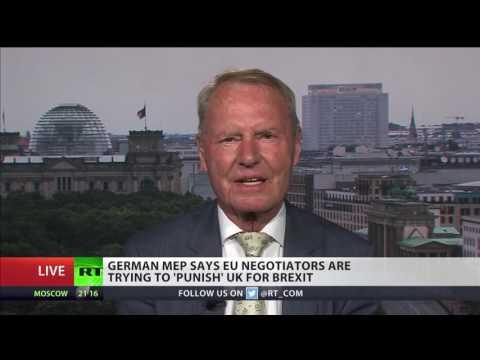 German MEP: UK, last country of common sense, is leaving EU