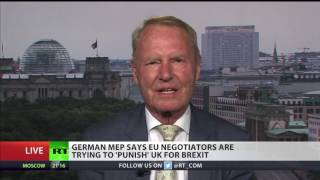 German MEP: UK, last country of common sense, is leaving EU