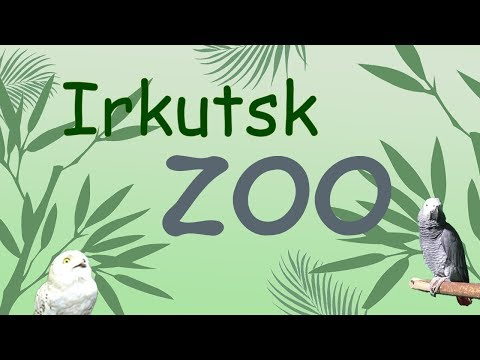 Посетил иркутский зоопарк