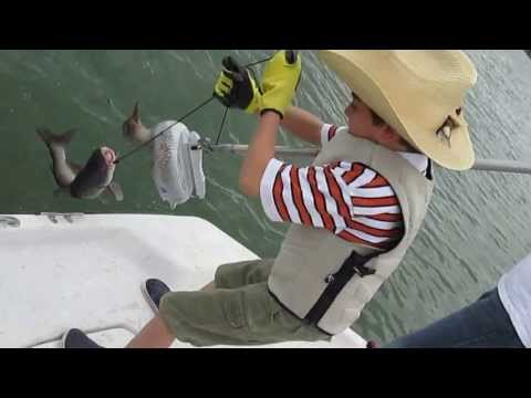 Fishing in South Austin from YouTube · High Definition · Duration:  10 minutes 39 seconds  · 166 views · uploaded on 6/29/2016 · uploaded by Panfish Sam