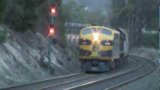 MickFix Rail - Australian Trains - 9162 El Zorro Grain Train (Friday 18th May, 2012)