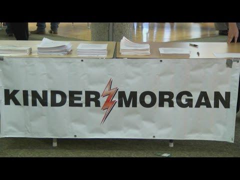 Kinder Morgan suspends plans to construct Palmetto Pipeline
