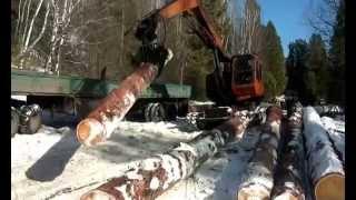 видео Погрузка лиственницы из Сибири