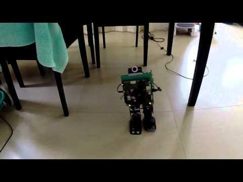 Super-Computer-On-Legs Jetson TK1 based robot