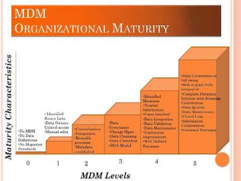 Master data management maturity model
