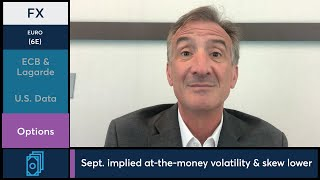 July 22 FX Commentary: Larry Shover