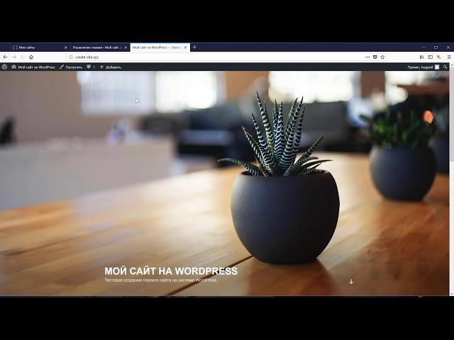 Как создать сайт на Wordpress за час используя плагин Elementor | WordPress