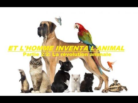 Et l'homme inventa l'animal  22  La révolution animale Documentaire