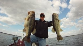 Alabama Rig 25 lbs of Bass in 2 Casts