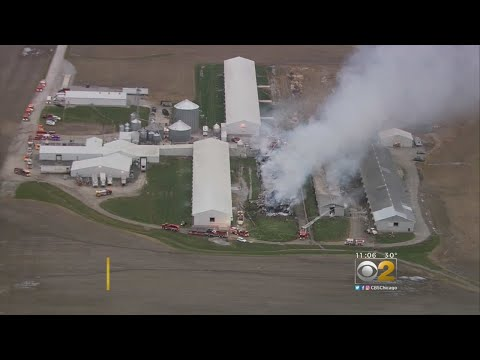 Mick Lee - Fire Breaks out at Egg Farm in Grant Park