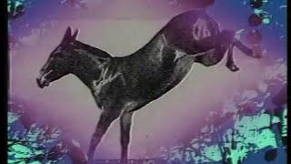 YouTube動画:The Art of Noise - Legs (Official Video)
