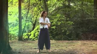 Meridiaan Chi Kung - Metaal