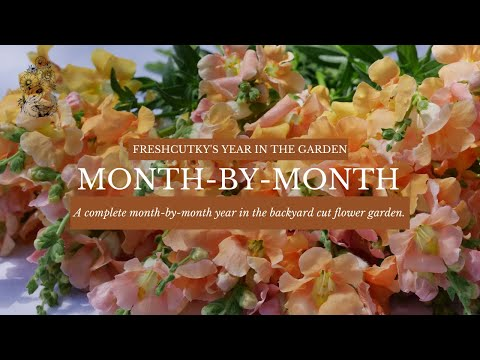 The Micro-Farmer's Year: Intensive Urban Gardening by Month - Cut Flowers  Vegetables Garden Organic