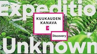 Tammikuun Kuukauden kanava: Discovery Channel