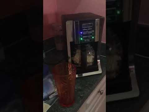 Kid's coffee pot Ramen noodle tutorial pt.1
