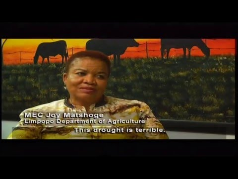 Living land - Episode 5: Rainwater management in the Limpopo River Basin