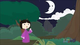 En un Bosque De La China La Chinita Se Perdió - Canciones Infantiles