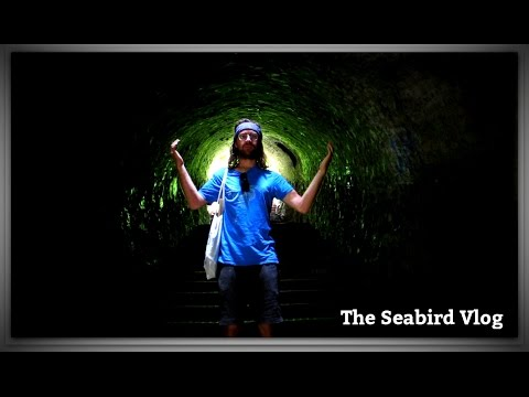 This is Serbia! - The Seabird Vlog 239