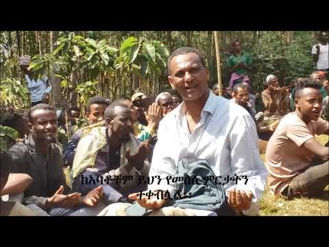 Documentary  on Ethiopian Coffee Stumping and Pruning launching  Ceremony – February 2019