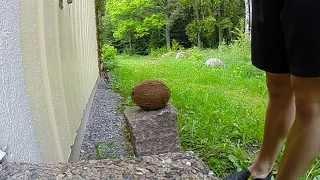 Coconut gets splattered Slow Motion GoPro3+