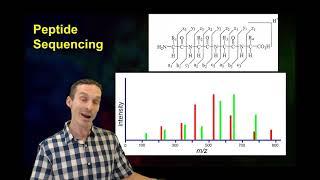 Top down vs bottom up proteomics