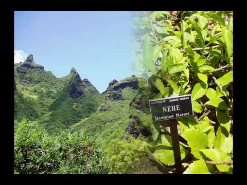 The Limahuli Garden and Preserve - YouTube