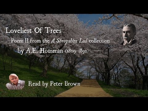 A Shropshire Lad: (II) Loveliest Of Trees By AE Housman | Poetry Reading | #06