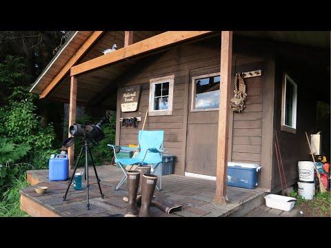Forest Service Cabins In Alaska! - Alaska Series Vlog 4