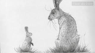 bande annonce de l'album Le Lièvre et les lapins