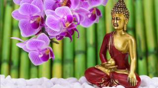 15 Min. Meditation Music for Positive Energy, Concentration & Focus & Relax Mind Body- Inner Peace