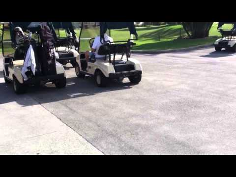 Zach and grandpa driving golf cart