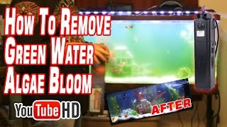 aquarium uv light review sunsun jup 22