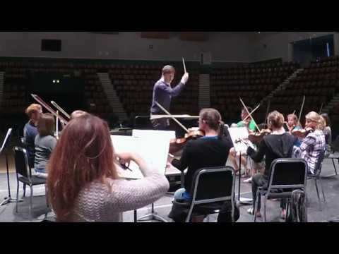 Beethoven 5th Symphony (1st mvt.)