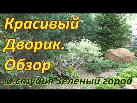Красивый дворик. м. студия Зеленый город