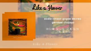 Cover images LIKE A FLOWER by Lim Chae Eon [ English & Hangul Lyrics ]