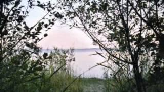 Loran Alary - To the sea