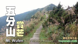 瑞芳著名賞芒景點,有「台灣萬里長城」美譽的五分山步道(Wufen Mountain Trail)