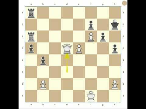 Chess Analysis: B júnior X xiconeves (FlyOrDie Website)