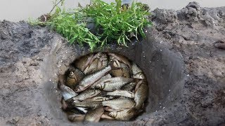 The first Trap Can Catch Alot of fish  Crabs And Eels By 4 Pipe With deep Hole