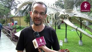 Tema: Exponen hallazgos de Plesiosaurio en el Museo de Historia Natural