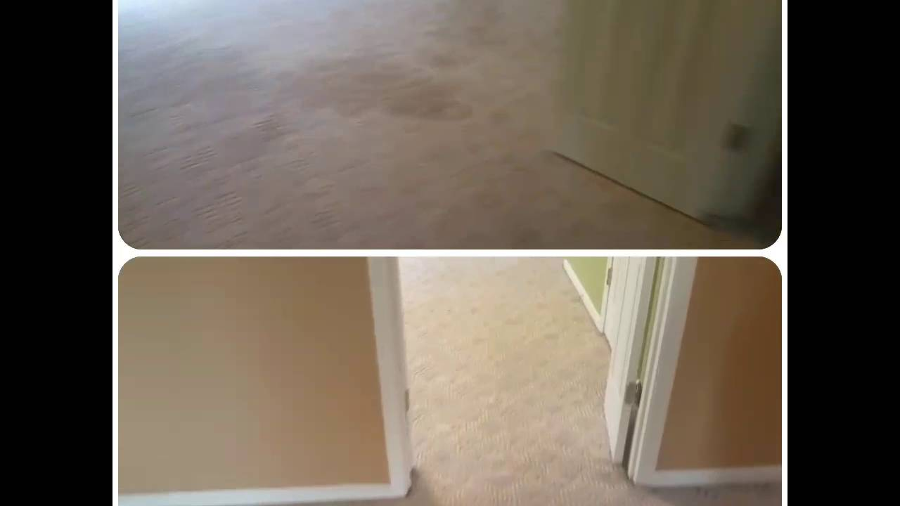Carpet cleaning Panama City Beach, Florida - YouTube