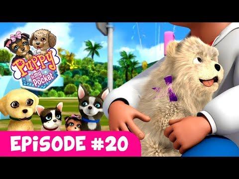 Puppy In My Pocket - Webisode #20