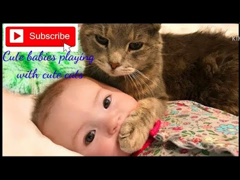 super funnny!!! Cute Babies playing with cute cats compilation #4