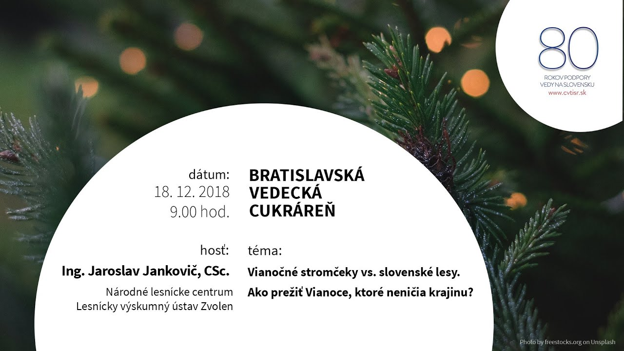 33e4de751 Vianočné stromčeky verzus slovenské lesy. Ako prežiť Vianoce, ktoré neničia  krajinu?